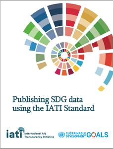 SDG IATI Standard paper