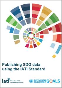 SDG IATI Standard paper 1