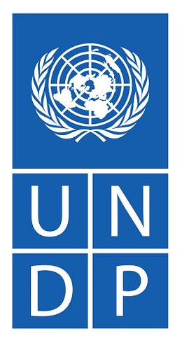 UNDP small
